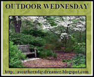 Outdoor-Wednesday-logo